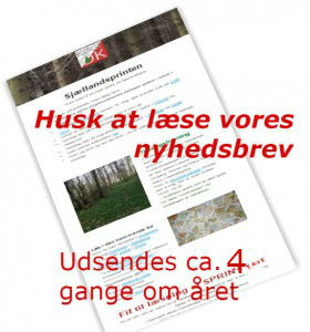husk-280x300x