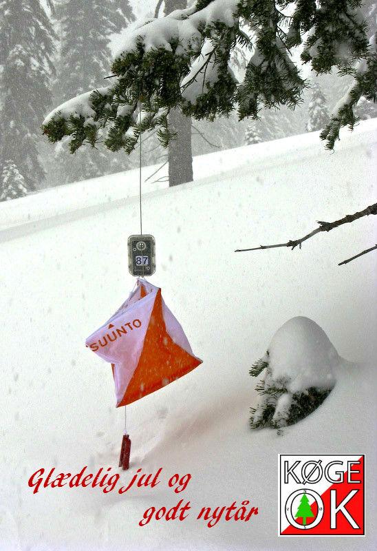 snow-o2