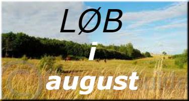banner_august